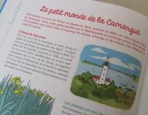 camargue_provence
